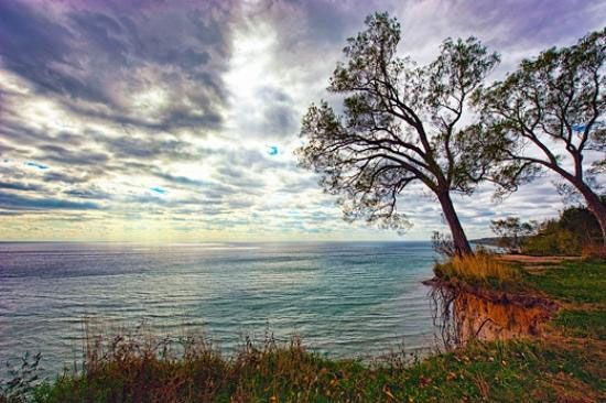 ScarboroughBluffs017